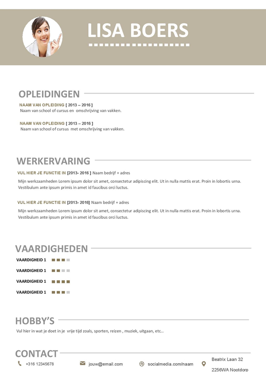 professional cv format download