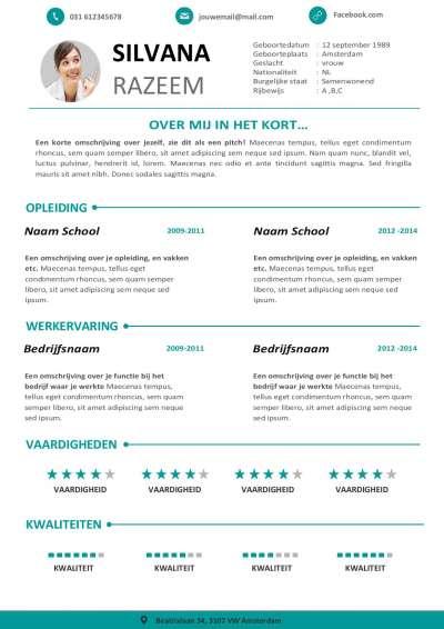 Perfect CV template in stijl voor sollicitanten