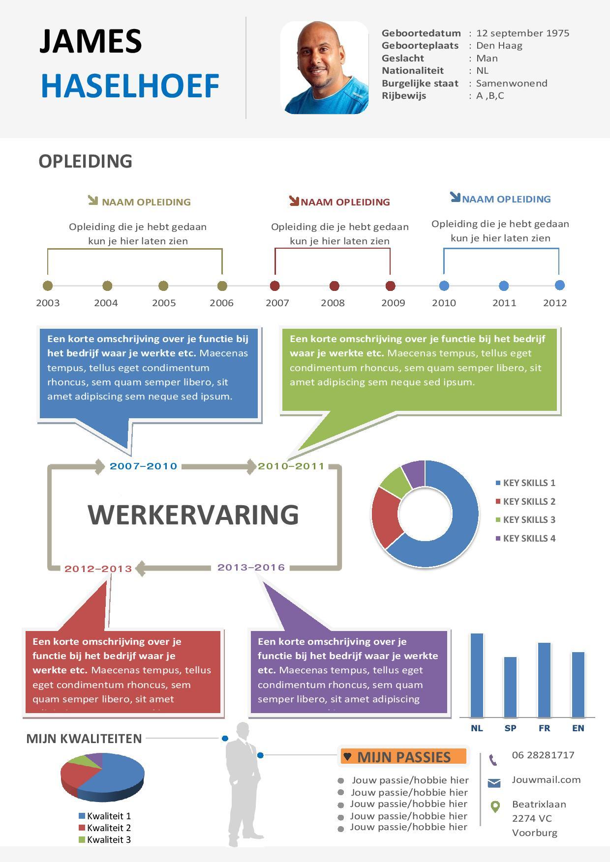cv elementen Curriculum vitae met infografische elementen