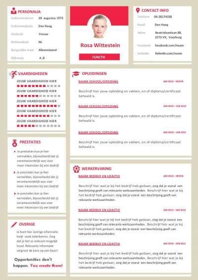 Met dit CV format in het engels kan je ook in het buitenland solliciteren