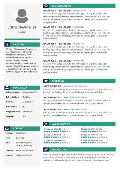 Een overzichtelijk, groen, uniek, strak en duidelijk CV
