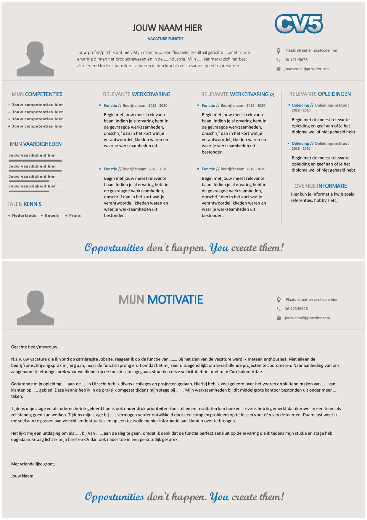 Maak een professionele indruk met dit unieke en horizontale CV layout