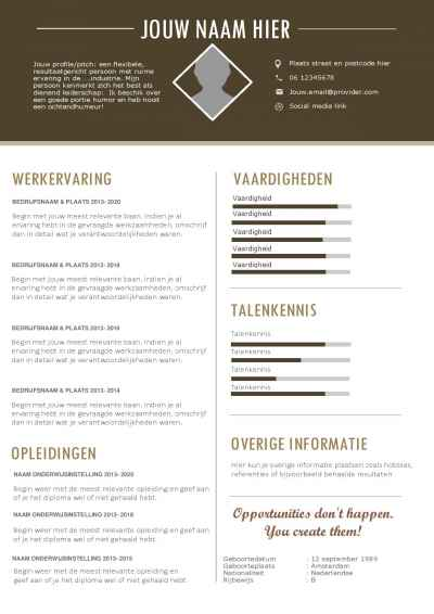Mooi cv template in Word formaat