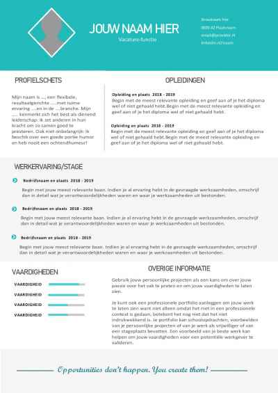 Frisse cv sjabloon in Word format