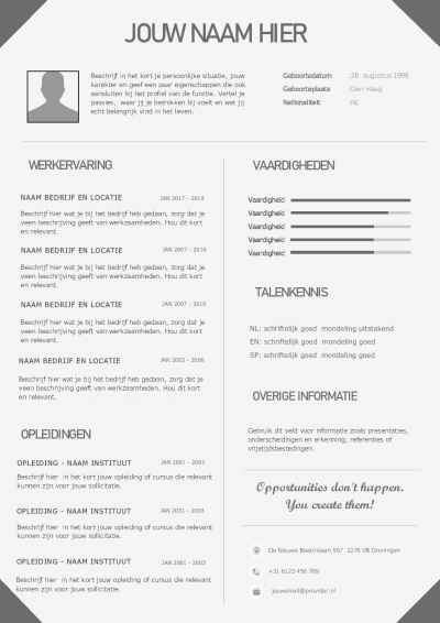 Download dit cv template in Word formaat