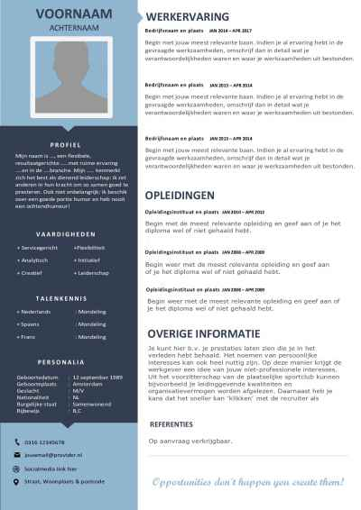 CV Template Unique