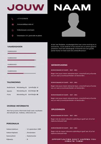 Modern Word cv template en motivatiebrief